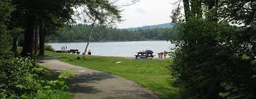 New Hampshire forest images The new hampshire division of parks and recreation forest lake jpg