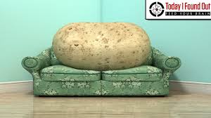 Couch Potato Clipart The Lazy Origins Of The Phrase U0027couch Potato U0027