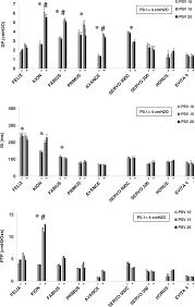 Types Of Ventilators Performance Characteristics Of Five New Anesthesia Ventilators And