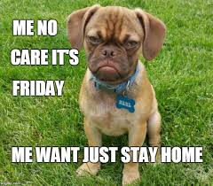 Frowning Dog Meme - image tagged in puppy cute sad frown tgif friday imgflip
