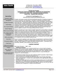 Executive Director Resume Template Executive Director Resume Executive Director Resume 36 Resume