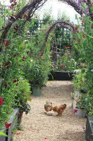 Chickens For Backyard by Modern Farmer 9 Backyard Gardens With Chickens Gardenista