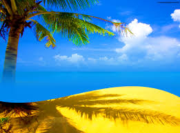 free palm tree beach backgrounds for powerpoint holiday ppt