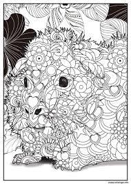Coloriage Petit Hamster Adulte Animaux dessin