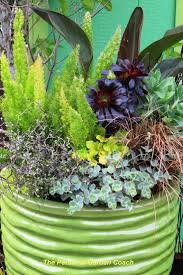 Vegetable Garden Containers by 6463 Best Organic Gardening Tips Images On Pinterest Organic