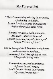 Loss Of A Child Words Of Comfort Loss Of A Pet Quotes Google Search Good Thoughts Pinterest