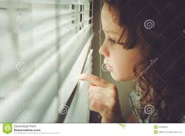 little child looking out the window through the blinds stock