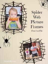 spider frame 1 jpg