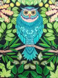 29 Best Big Owl Images On Pinterest Owls Owl And Garden Owl Coloring Ideas