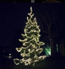 how to put lights on a tree outside how celebrities are preparing for christmas photo 1
