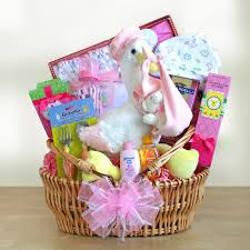baskets for gifts special stork delivery baby girl gift basket 99 95 hayneedle