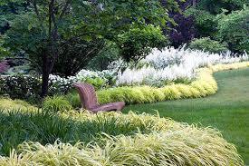 hardy grasses for the garden shade gardening perennial ornamental