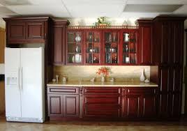 Unpainted Kitchen Cabinet Doors Refurbishing Kitchen Cabinet Doors Images Glass Door Interior