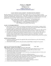 Business Resume Examples by Medium Size Of Resumeaccount Profile Resume Weakness Interview