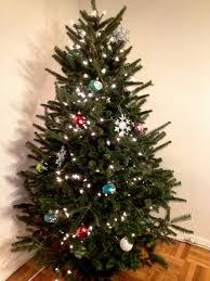 christmas astonishing real christmas trees how to recycle