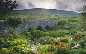 required reading the irish garden gardenista