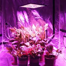 Grow Lights For Indoor Plants Canada by Niello Ultra Thin U0026 Ultra Light Led Grow Light Panel 45w 225 Leds