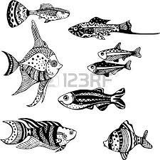 tropical fish tank images u0026 stock pictures royalty free tropical