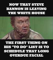 Politically Incorrect Memes - steve bannon dune at the white house another politically