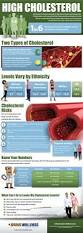 200 best fighting cholestrol images on pinterest cholesterol