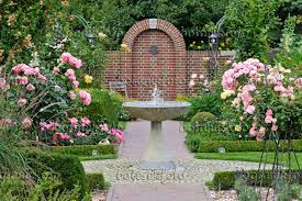 image rose garden with granite fountain and half standard roses
