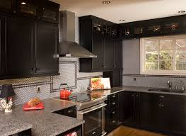 Flat Front Kitchen Cabinets Transitional Kitchen Maple Black Stained Shaker Door Cabinets