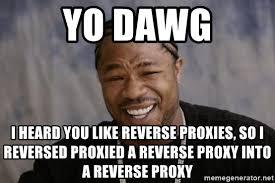 Proxy Meme - yo dawg i heard you like reverse proxies so i reversed proxied a