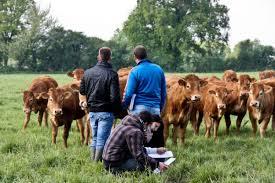 chambre agriculture albi l agenda 100 100 radio