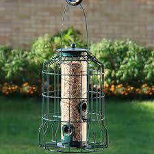 bird feeders you u0027ll love wayfair