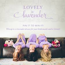 pin it to win it lovely in lavender pinterest giveaway shabby