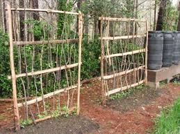 28 trellies popular arbor over garage plans woodworking