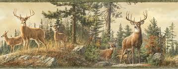 deer hd wallpapers hd wallpapers pinterest wallpaper