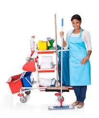 house keeping 4 reasons to choose excellence in housekeeping as your go to