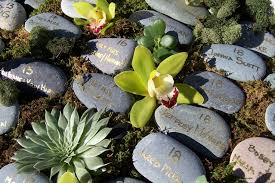 Rock Garden Succulents Succulent Rock Garden Charming Decoration Rock Garden Succulents