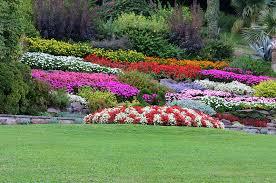 immagini di giardini fioriti i parchi fioriti e gli orti botanici pi禮 belli d italia initalia
