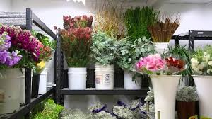 whole sale flowers south coast wholesale flowers