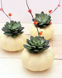 interior design fantastic thanksgiving décor ideas with waterplant