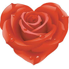 58 best hearts and roses images on pinterest red roses heart