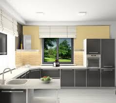 cuisine avec decoration cuisine aluminium