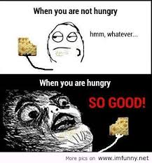 Funny Memes Quotes - cool funny meme quotes kayak wallpaper