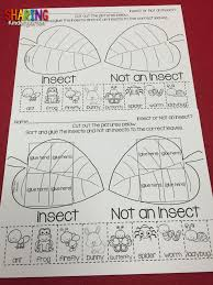20 insect crafts ideas signing bug