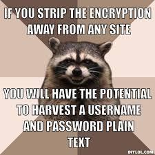 Meme Generator Raccoon - meme generator raccoon 100 images pun raccoon meme generator
