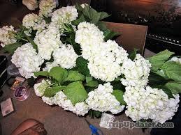 sams club wedding flowers diy bulk hydrangeas and white roses from sam s club products i