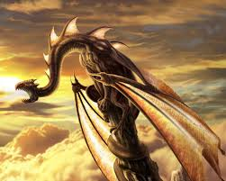 29 dragon wallpapers backgrounds images pictures design
