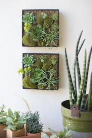 cactus home decor home decor makeover nosey parker okc