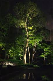 Landscape Tree Lights Tulsa Landscape Lighting Lighting