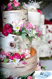 25 best birch wedding cake images on pinterest conch fritters