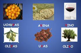 imagenes q inicien con la letra u alimentos vistos en clase página jimdo de experiencias educativas