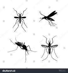 flying mosquito silhouette pr energy