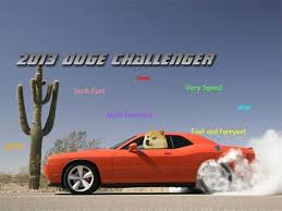Doge Meme Car - 35 best doge images on pinterest doge meme funny stuff and funny